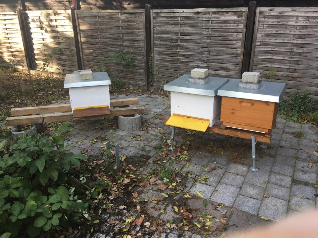 Bienenstand 2 1019