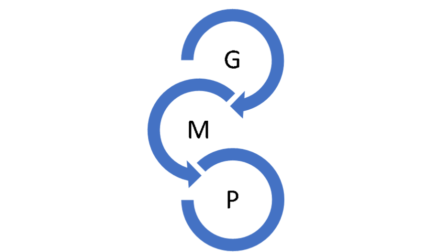 Good Manufacturing Practise GMP