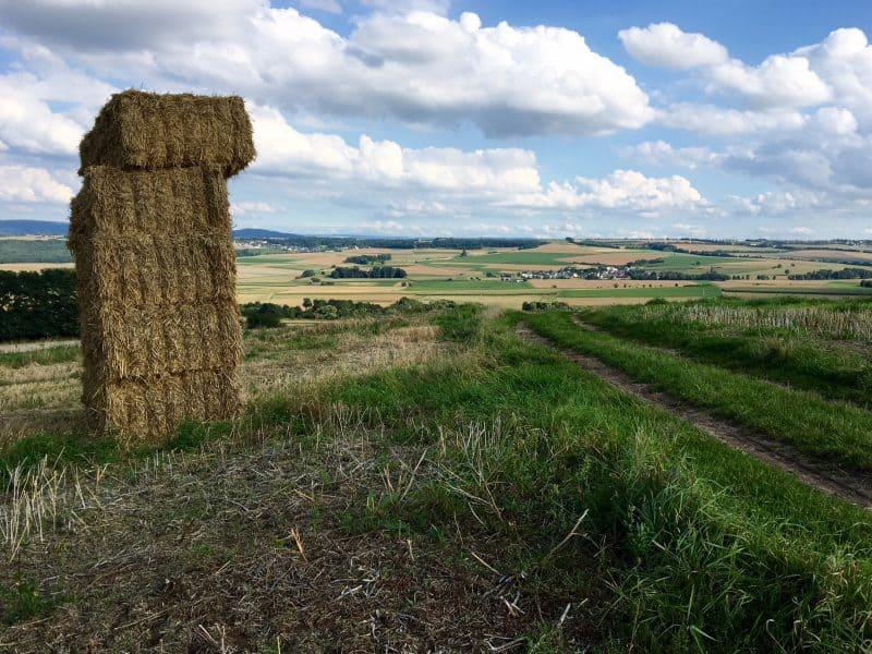 Paradiesweg-Polch-Kaan-nach-der-Getreideernte.jpg