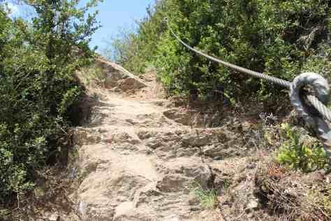 Buchsbaumwanderweg mit Seilen gesichert