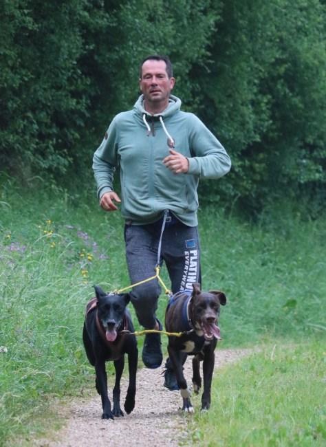 Markus Behr mit seinen Zughunden beim Joggen, Foto: Désirée Eklund