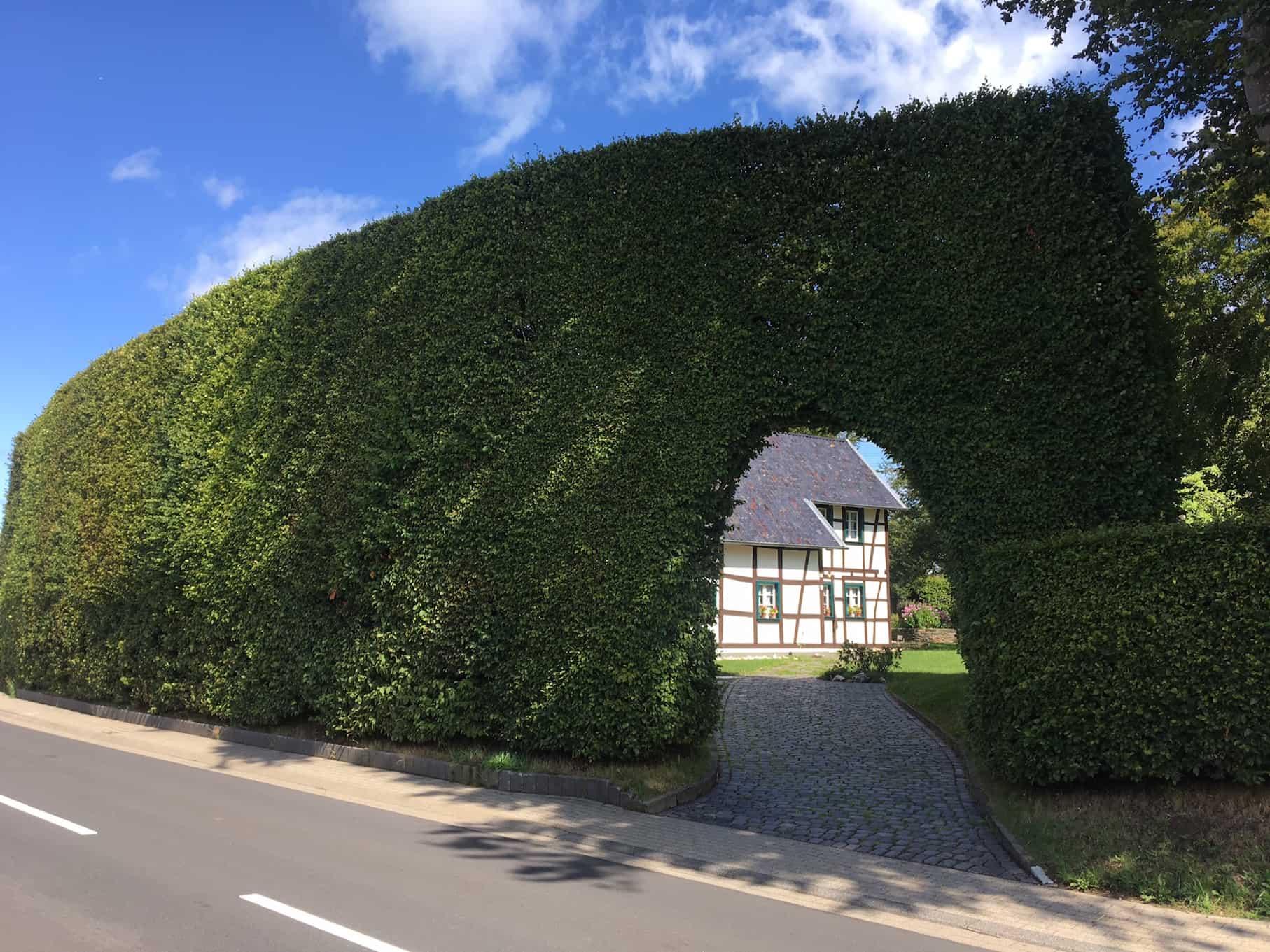 Heckenweg in Höfen