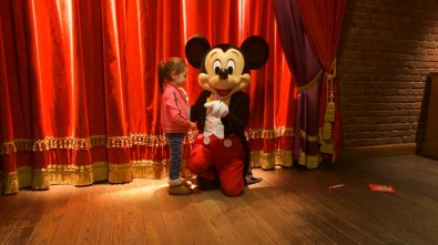 met mickey disney