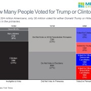 Marimekko chart showing the U.S. population by voting behavior in 2016