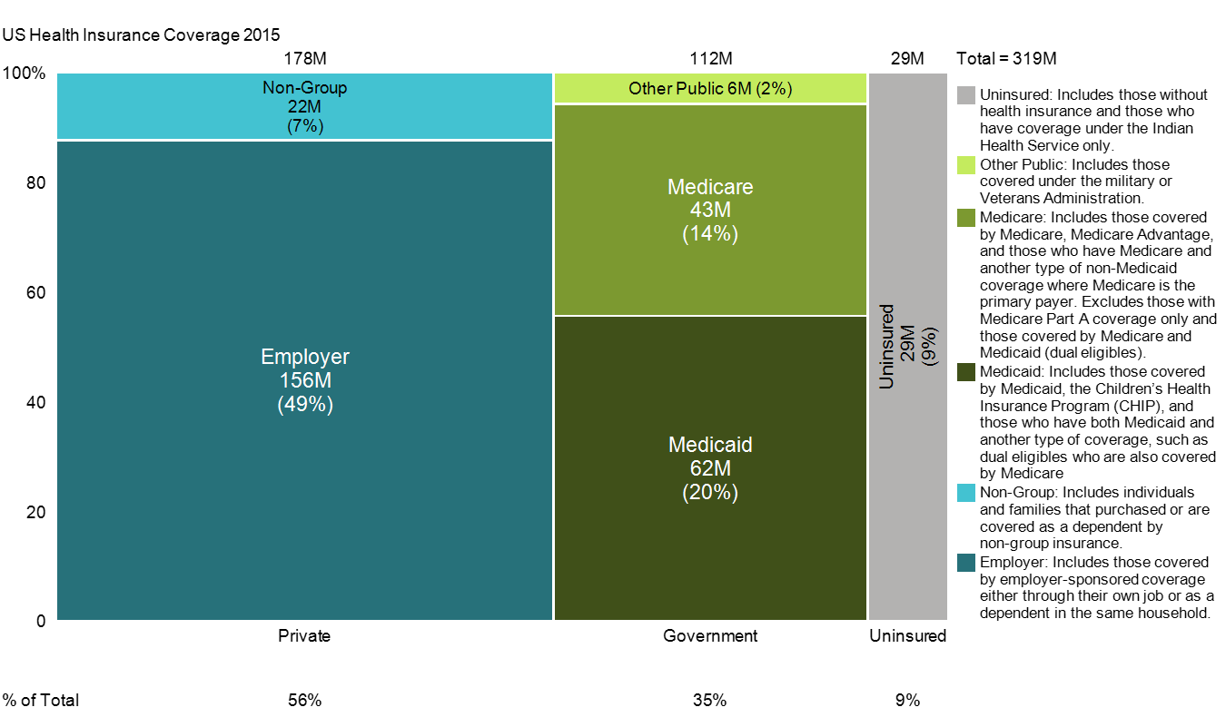 Over half of Americans are privately insured. The government covers 35% and 9% have no health insurance. The vast majority of private insurance is provided by employers. Medicaid and medicare cover 20 and 14% of Americans. These data are presented in a Marimekko chart and are based on 2015 data from the Kaiser Family Foundation.