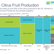 Marimekko chart of citrus fruit production in US by type of fruit and state.