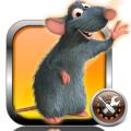 iLEX-RAT