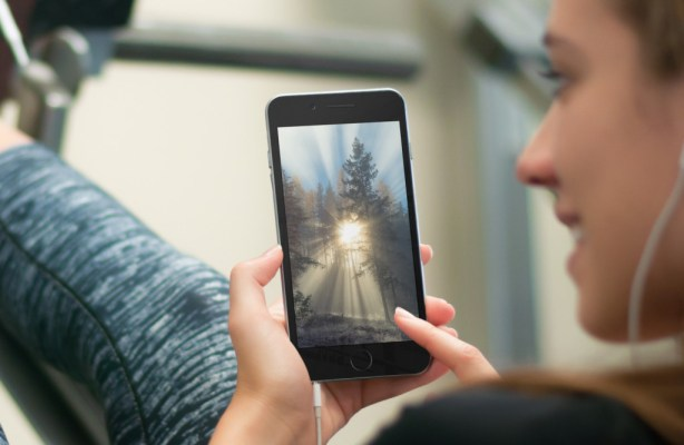 sfondi-foresta-iphone