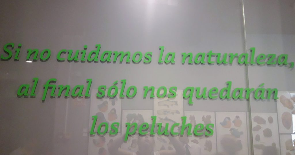 museu ciencias naturais madrid peluches
