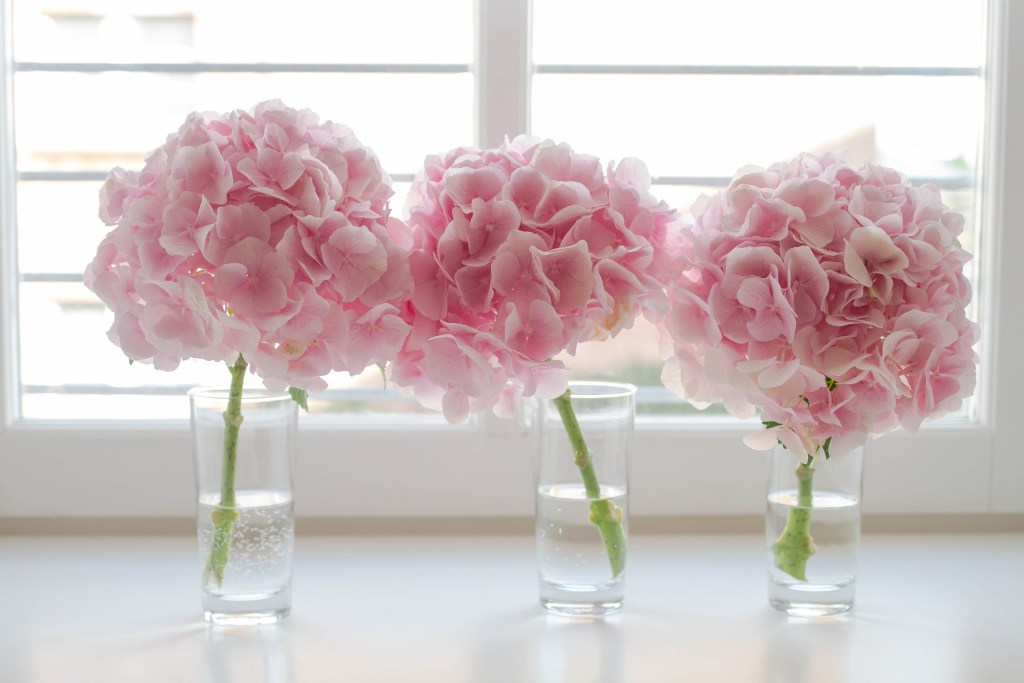 Wedding flowers for people with allergies. Hydrangeas