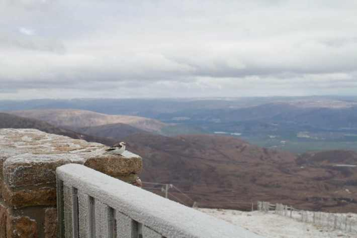 CairnGorm Mountain, Scotland Travel Guide