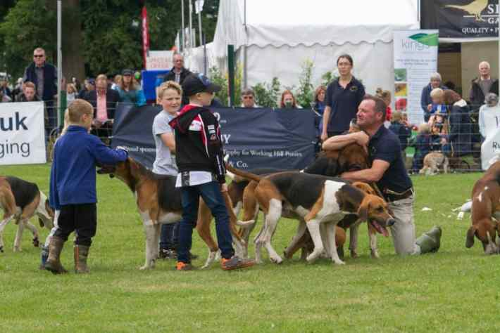 Scottish Game Fair, Scotland, Perth