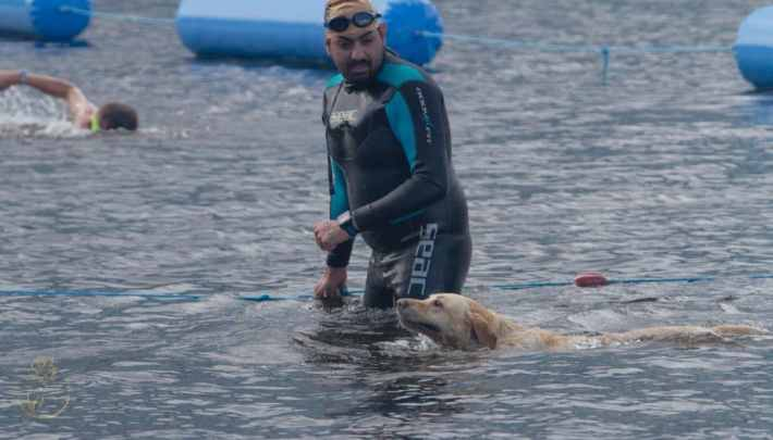 Great Scottish Swim, Loch Lomond. Photo of a man getting out of the water in a wetsuit and a random dog swimming beside him