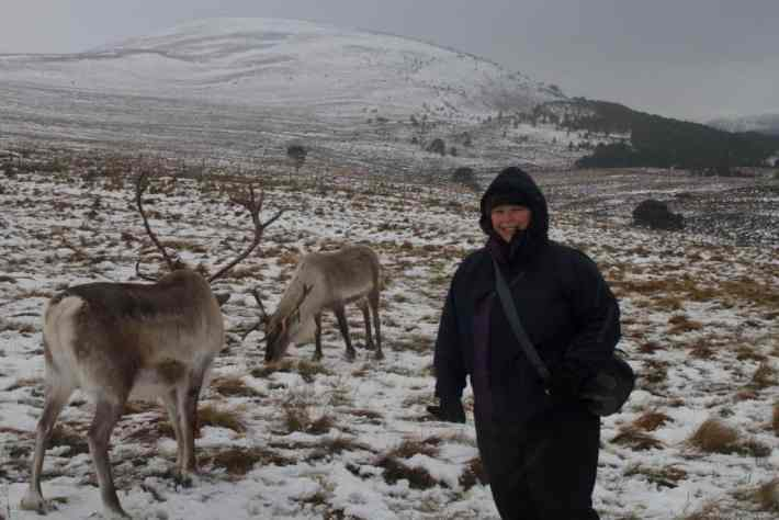 Cairngorm Reindeer Centre. A woman wrapped up, stood beside two reindeer. The hills are covered in snow