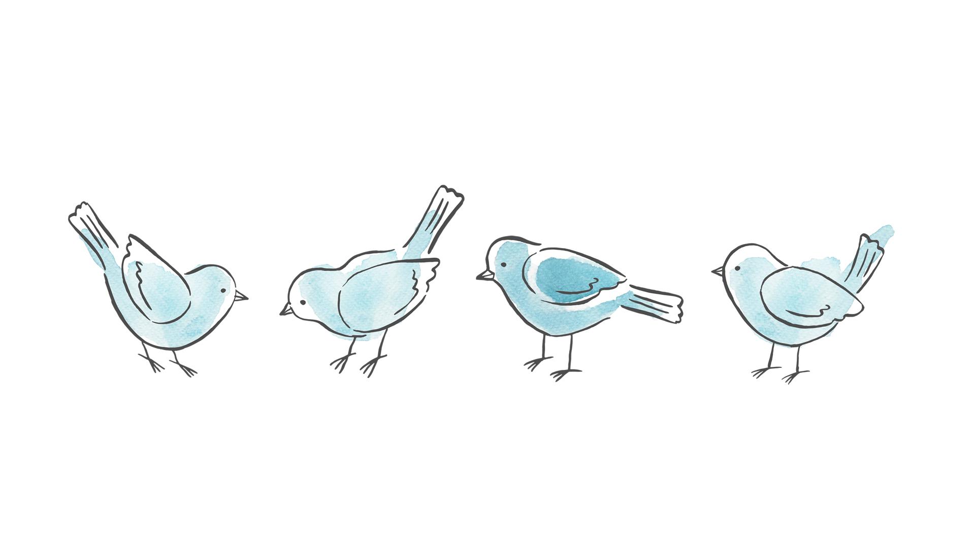 birdsArtboard 1