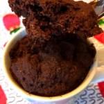 Coconut Flour Chocolate Mug Cake Recipe Gluten Free Paleo Melanie Cooks