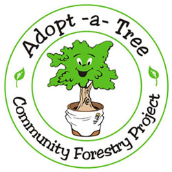Image result for adopt a tree miami
