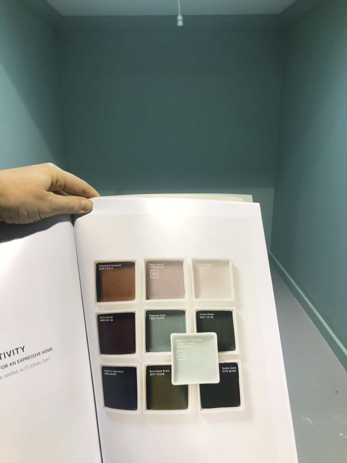 dulux, dulux paint, tranquil dawn, creativity, creativity palette, palette, colours, colors, paint colours, coty, dulux coty, 2020, interior trends, trends, home decor, diy