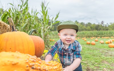 Pumpkin Patch Photos at Farmers Daughter