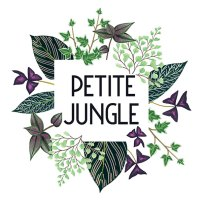 logo-carre-petite-jungle-melanievoituriez