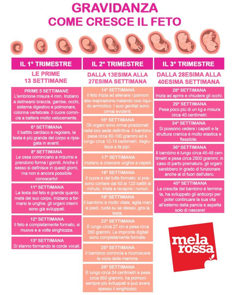 Calcolo Settimane Di Gravidanza La Guida Completa Melarossa