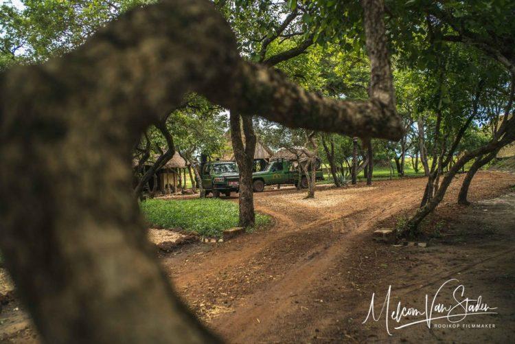 Melcom Van Staden - Uganda Wildlife Safaris Hunting Sitatunga - Kafu River Camp