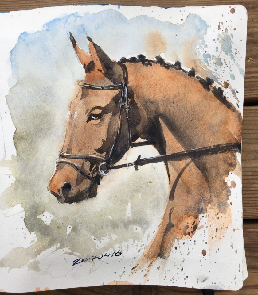 A watercolour horse sketch by David Meldrum