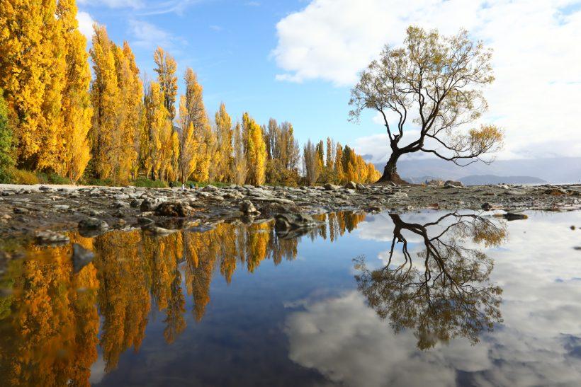 Visto Nova Zelândia