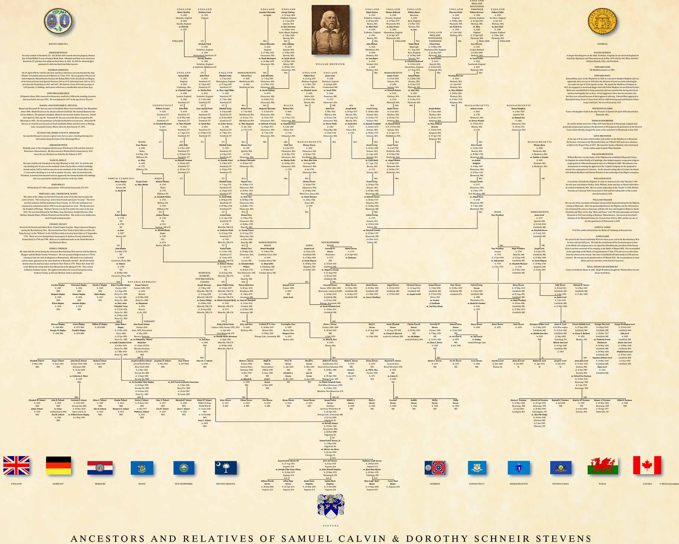 family tree pedigree chart