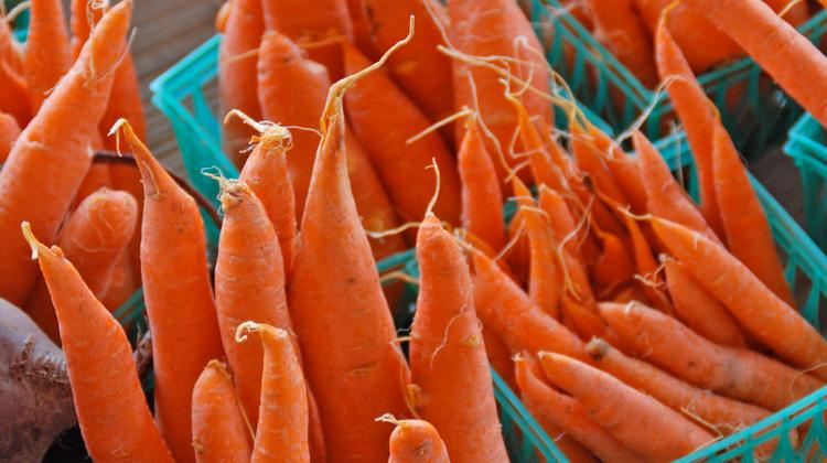 Bitter Tasting Carrots :: Melinda Myers