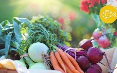 Vezels en hun belang voor jouw microbioom