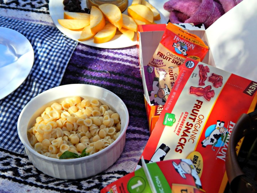 Easy Picnic Food Idea from @horizonorganic #MealTimeSolutions #ad