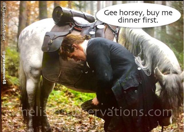 I canna blame the horse