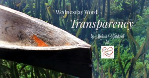 Transparency – Heartwings Blog