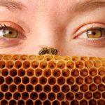 Δεκαήμερο εκδηλώσεων στη Μελισσοκομία