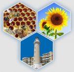 «Η ΚΥΨΕΛΗ» έσταξε μέλι για την ΟΜΣΕ