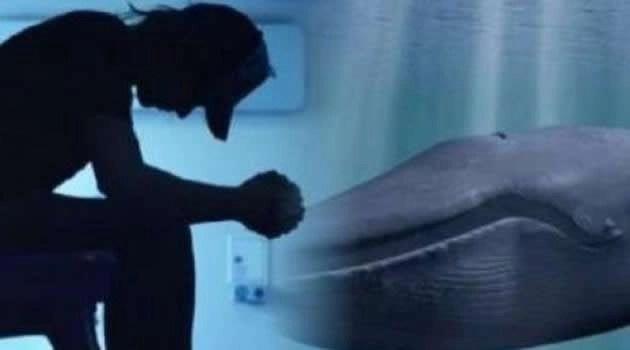 """""""BALENA BLU"""", CINQUANTA PROVE FINO AL SUICIDIO"""
