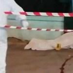 Napoli, Forze dell'Ordine controllano il territorio. Arresti e denunce: trovato un morto in un supermercato