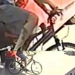 Sant'Antimo. Derubata una bici fuori un bar: richiesta la massima condivisione per ritrovarla