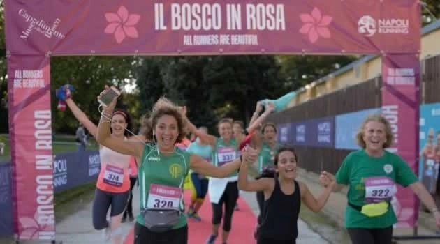 Arrivo al Bosco in Rosa