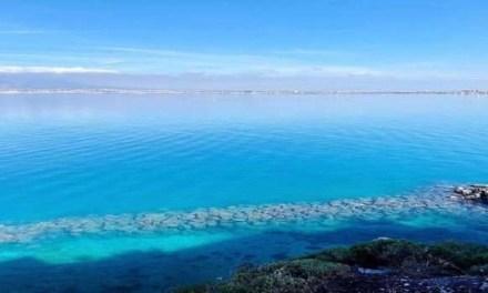 L'influenza del coronavirus sul mare di Napoli