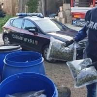 Blitz a Marano, vendevano la droga su appuntamento, sgominata rete di spaccio: 14 arresti