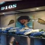 Napoli, cronaca Un altare laico per il Pibe de Oro nel cuore dei Quartieri spagnoli