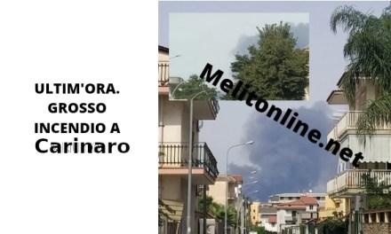 ULTIM'ORA. GROSSO INCENDIO A CARINARO