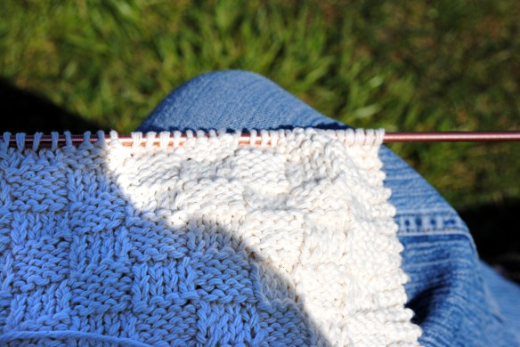 The First Stirrings - knitting outdoors