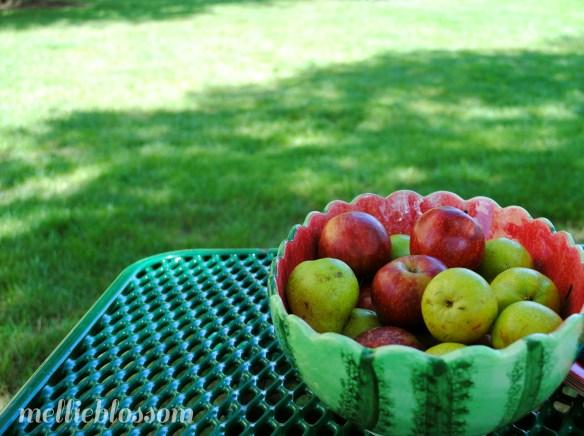 August - apples
