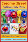 Sesame Street & Elmo Themed Birthday Party