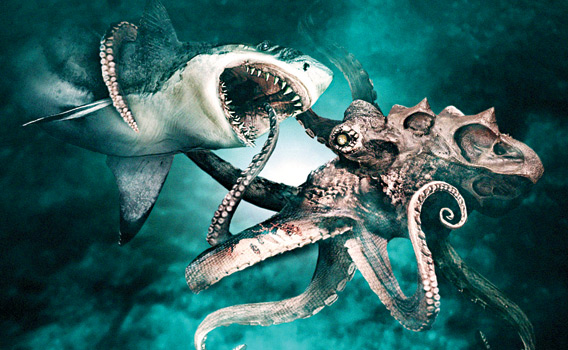 It involves calamari.