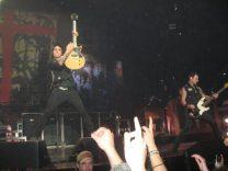 Green Day Concerto Torino 12