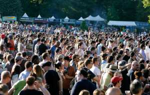 Pubblico del Great Googa Mooga Festival